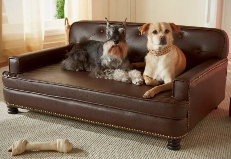 C mo hacer una cama para perros reciclada redacci n - Como hacer una cama para perro ...